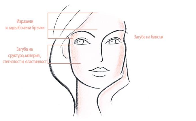 СЕРИЯ PHYSIOLIFT Серията PhysioLift изглажда дълбоките бръчки, възвръща стегнатостта и блясъка на кожата.