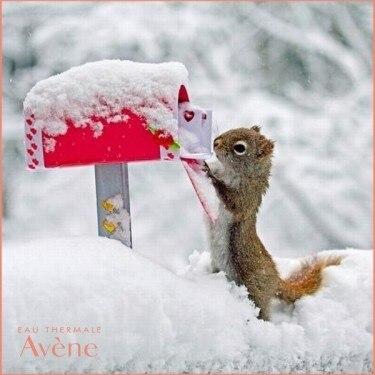 Коя е вашата зимна тайна? Кой продукт на Avene ви спасява през зимата.