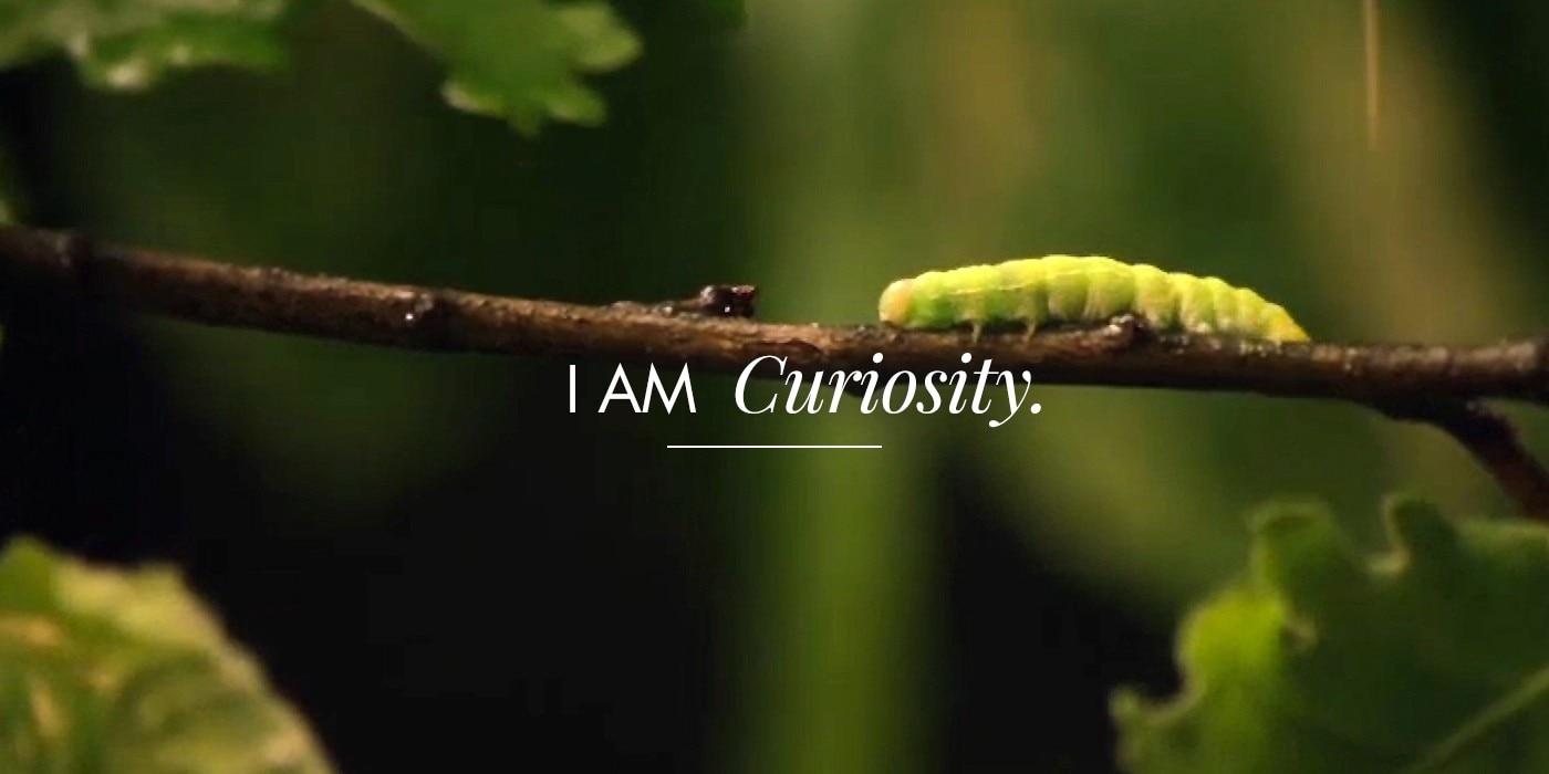 i am curiosity eau thermale avene