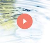 Descubre los gestos de la aplicación, los consejos de expertos, videos y la historia del agua.