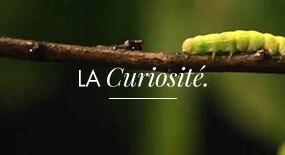 La Curiosité, Vous, Eau Thermale Avène...