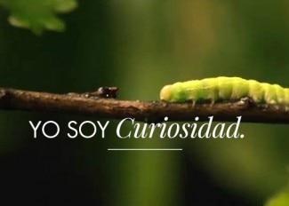 YO SOY Curiosidad