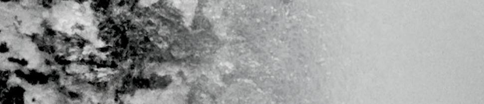 Bruine vlekken doen vervagen
