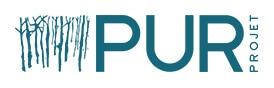 Logo Pur Projet