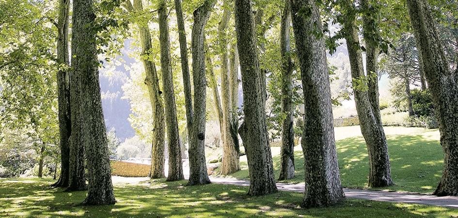 Eau Thermale Avène Park