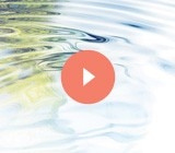 Discover the Application gestures, the experts advice, the did you know? Videos and the story of water.